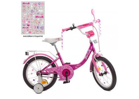 Детский двухколесный велосипед 16 дюймов Profi Princess Y1616 фуксия