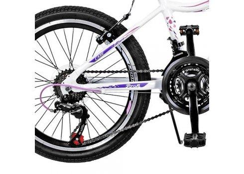 Велосипед спортивный Profi 20 дюймов GW20CARE A20.3